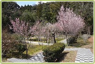 庭園遊歩道
